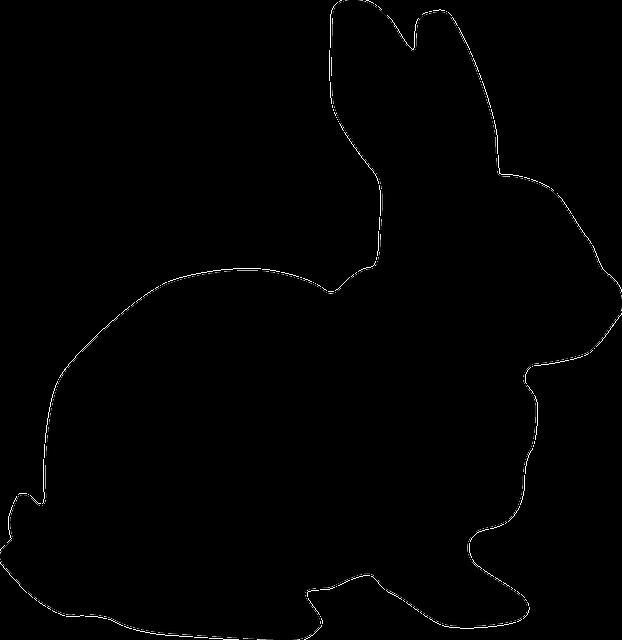 rabbit-153203_640