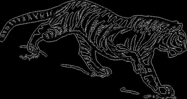 tiger-153799_640